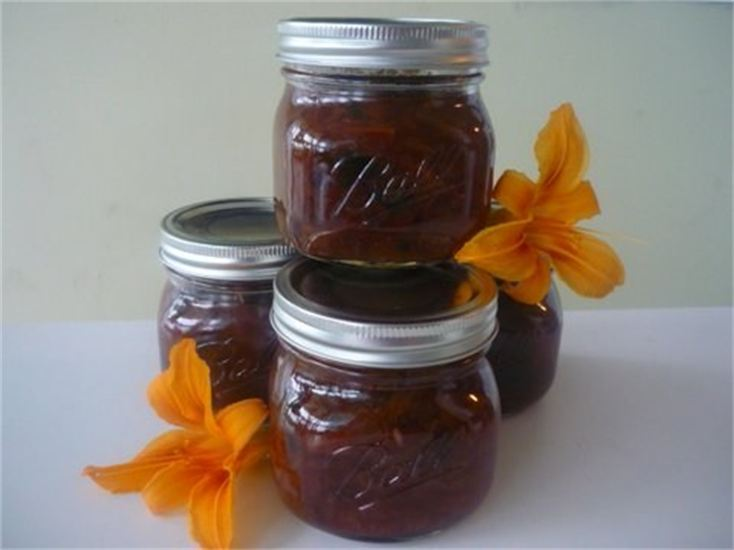 effortless abundance chutney